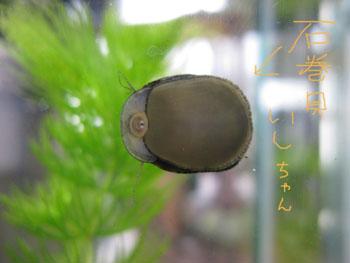11.24.6.IMG_7320.jpg