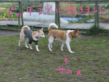 12,19,6,IMG_6501.jpg