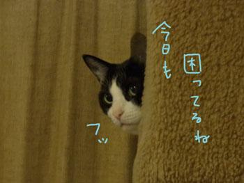 2.5.9.RIMG0893.jpg