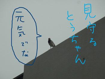 7.14.3.RIMG4632.jpg