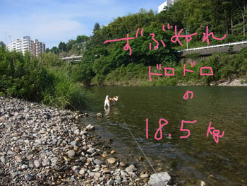 7.3.10.RIMG1525.jpg